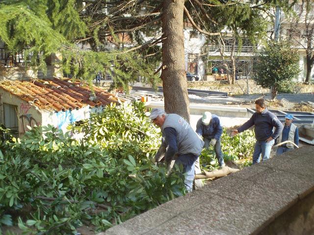 Ανάπλαση πάρκου μικρών καταρρακτών με κόψιμο δέντρων