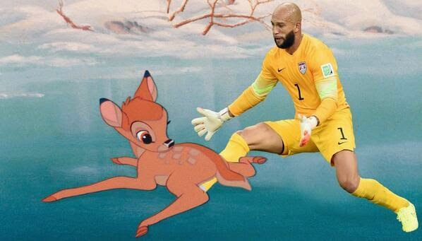 Tim Howard meme