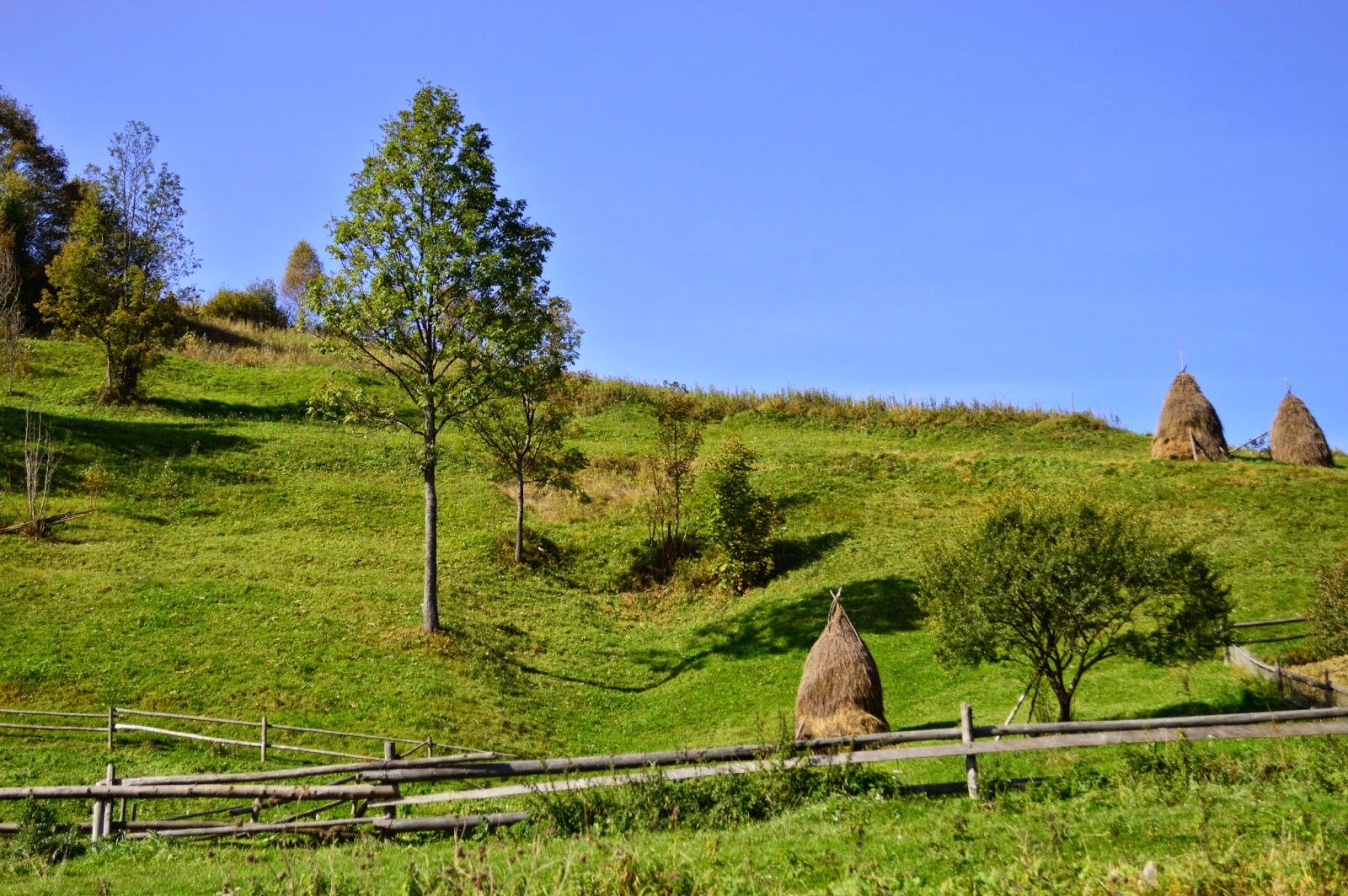 куда поехать отдыхать в карпатах, как отдыхать в карпатах, Карпатские пейзажи, банош, вкусные блюда закарпатья