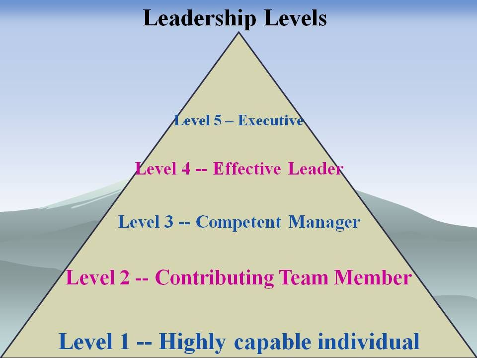 Leadership traits in nursing