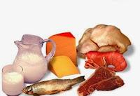 Alimentos constructores de origen animal