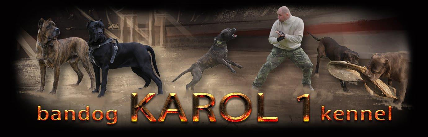 karol1
