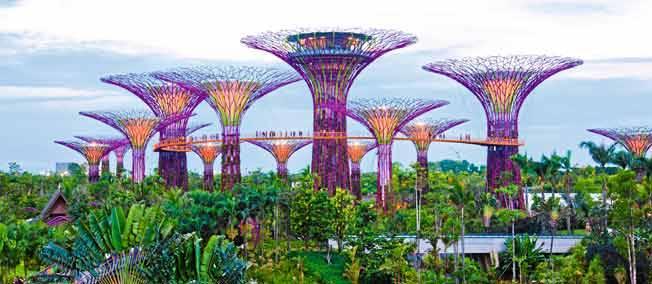 Des livres en ribambelle 31 octobre journ e mondiale de for Architecture de jardin