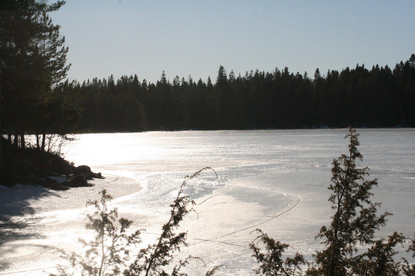 Mökkijärvi