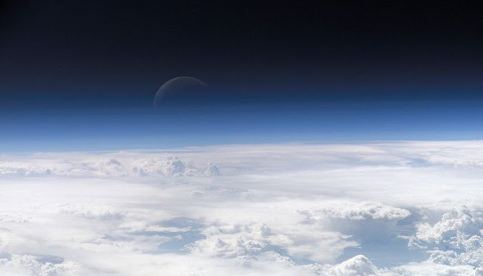 Sebelum Munculnya Hewan Pertama, Kadar Oksigen Bumi Meningkat