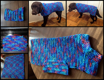 6 photos showing the dog sweater in progress and when complete and being modeled by my dark brown chocolate Lab. The sweater is made of yarn with various shades blue, red, purple, and green