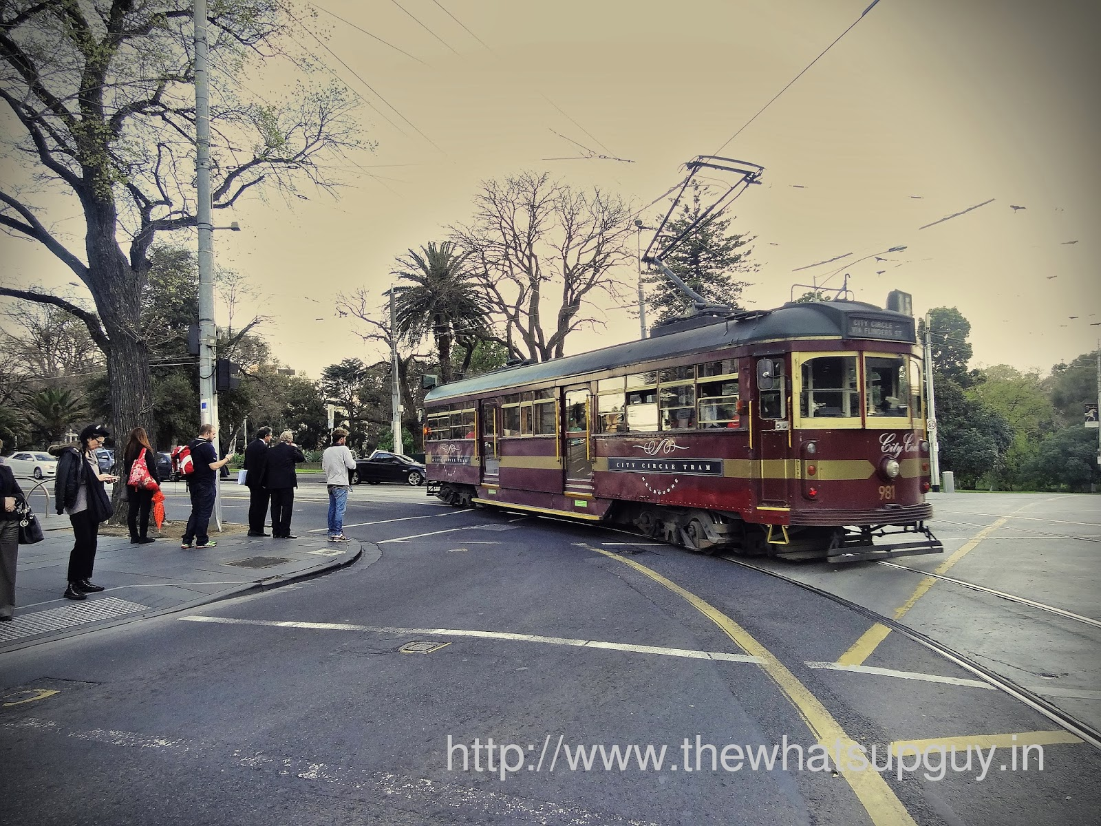 Trams on the Roads of Melbourne