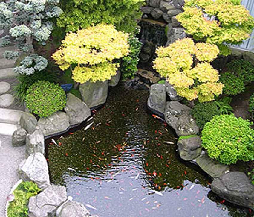 contoh kolam hias desain rumah sederhana interior
