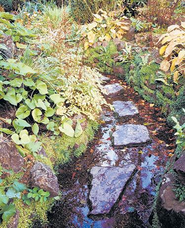 Iwanna Hatcher Garden Woodland Preserve
