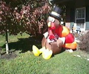 Giant Inflatable Turkey Balloon for Thanksgiving
