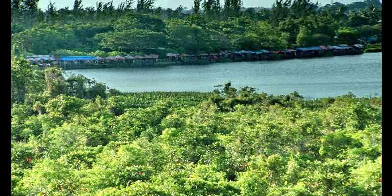 Mitos Buaya Buntung Danau Dendam Tak Sudah di Bengkulu