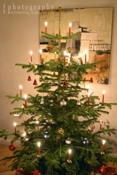 Weihnachtsbaum Heiligabend 2011