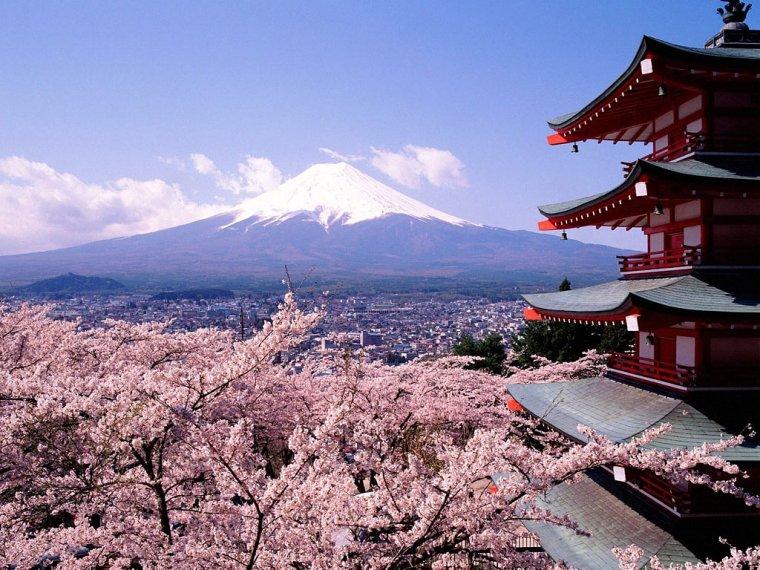 Projet à long terme : World Tour Almendros-en-flor-al-fondo-el-fuhiyama-japon