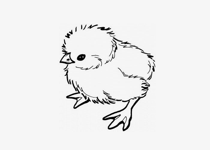 baby chick coloring page - Chick Coloring Page 2