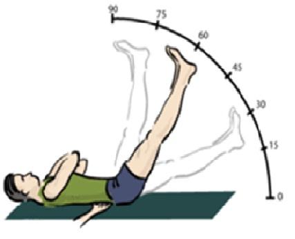 Prueba de lasegue fisioterapia for Test fisioterapia