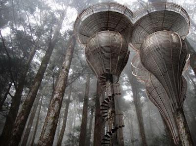 rumah pohon elf