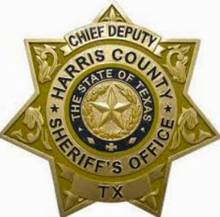 Chief Deputy badge for Harris County Sheriff's Office.