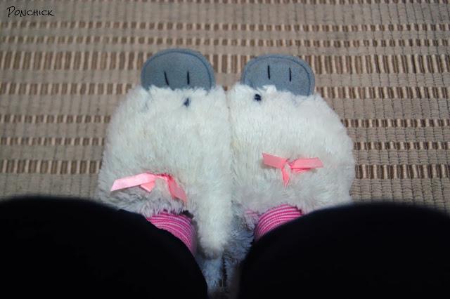 duck warm slippers