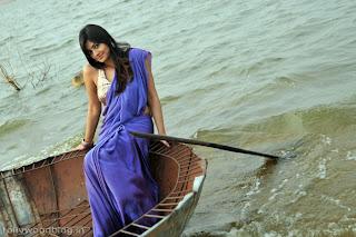 nikitha_narayana_hot_saree_stills_photos_001.jpg