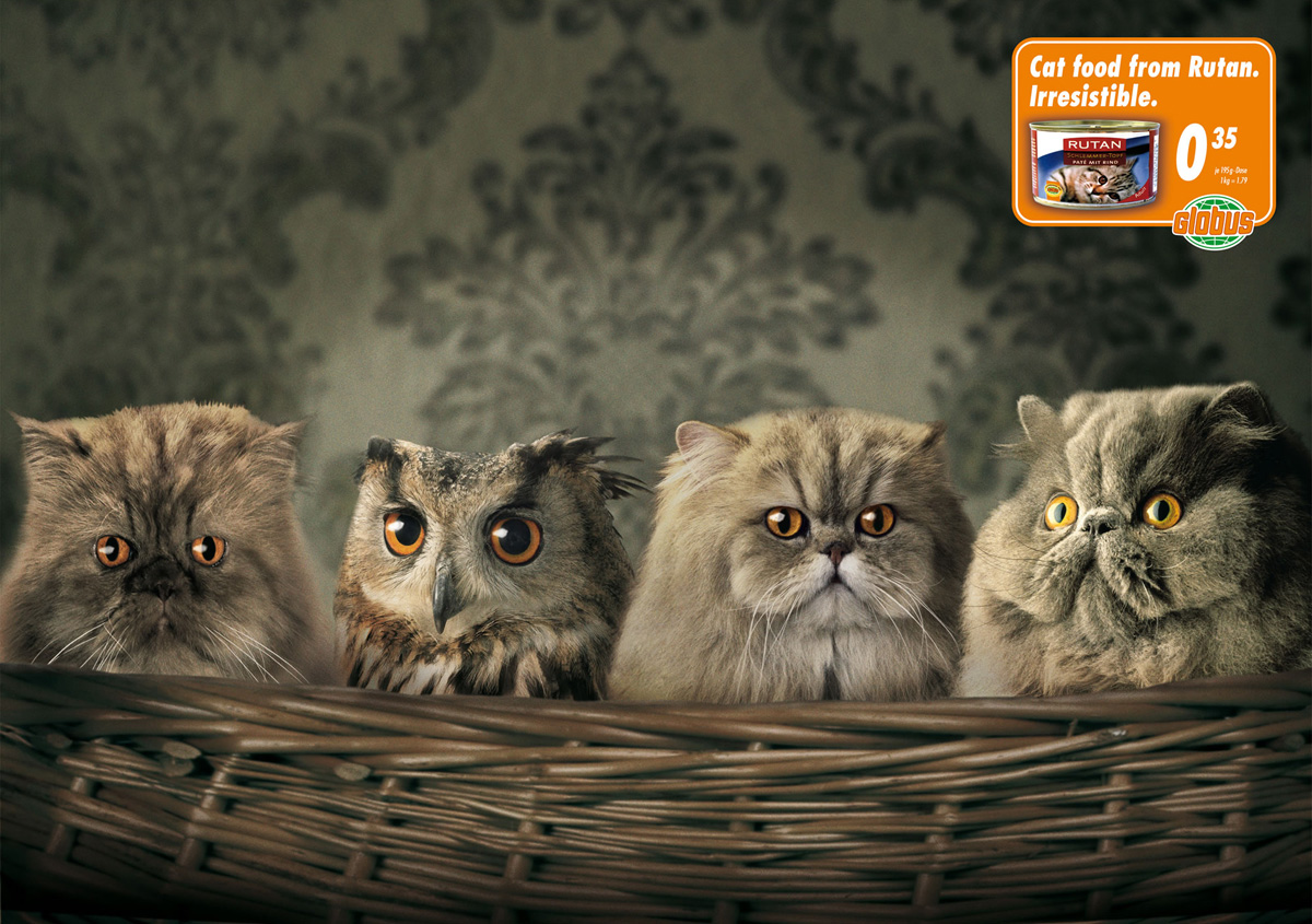 funny animal ads
