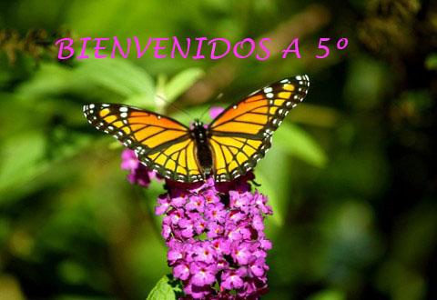 Aula9espartero  NATURALEZA Y SOCIEDAD