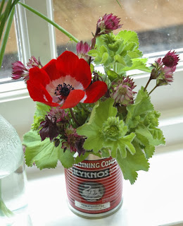 Red anemone de caen with alchemilla mollis and astrantia
