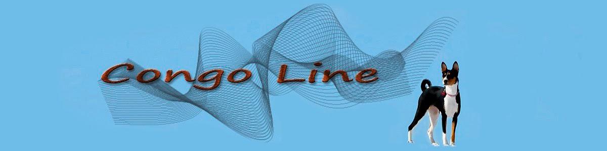 CONGO LINE basenji