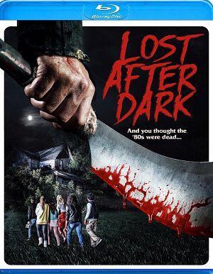 Lost After Dark (2015) BRRip 720p 550MB