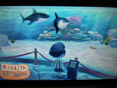 Animal Crossing New Leaf Museum