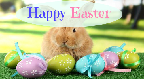 Happy Easter, Easter bunnies
