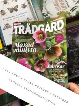 Tyras Potager - mångfaldens trädgård i Allt om Trädgård