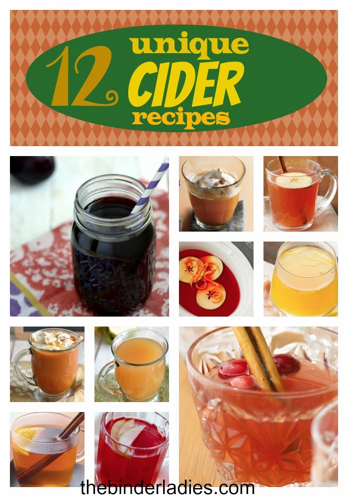 http://www.thebinderladies.com/2014/10/recipes-12-unique-cider-recipes.html#.VElAWEvdtbw