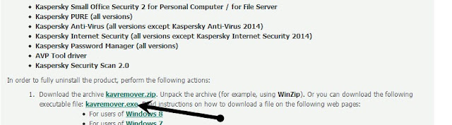 kasparsky Anti-Virus 2013