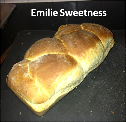 http://emiliesweetness.blogspot.co.uk/2014/05/brioche.html