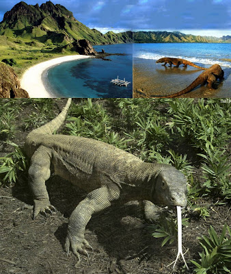 New 7 Wonders of Nature Komodo%201