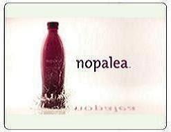 Amazing New Natural Remedy - NOPALEA