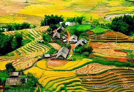 Let's discover Vietnam from North to South: #Hanoi - #Sapa -  #Halong - #Trangan- #MaiChau - #MuCangChai - #BaBelake -#BanGiocwaterfall - #DongVanKarstPlateau -  #Hue - #HoiAn - #Danang - #PhongNhaKeBang - #NhaTrang - #PhanThiet - #MuiNe - #Dalat - #HoChiMinh - #CanTho - #Mekongdelta - #Floatingmarket - #PhuQuoc...http://goo.gl/WN5uO6