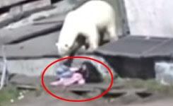 Woman survives vicious polar bear attack