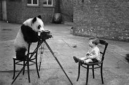 PÁGINA PRINCIPAL FOTOGRAFIAS
