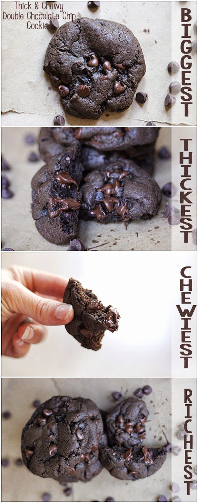 Thickest And Chewiest Double Chocolate Chip Cookies