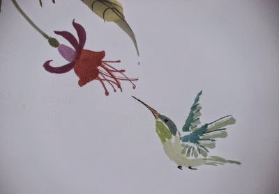 Colibri Nan Rae