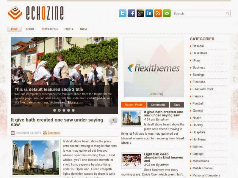 EchoZine - Free Wordpress Theme