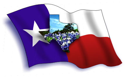 texas flag w bluebonnets