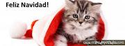 Portadas para- Feliz Navidad Gatitu portadas para facebook feliz navidad gatitu