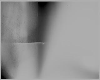 Tmax 100, film, grain, sharp, analogue, analog, photography, darkroom, print, silver gelatin, enlarger, enlarging, 5x4, 4x5, large format, speed graphic, kodak ektar, 127mm, Adox CHS 100 ii
