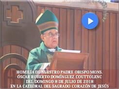 VIDEO DE LA HOMILÍA DEL SR. OBISPO, DEL DÍA  8 DE JULIO DE 2018