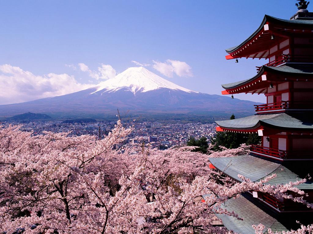 http://3.bp.blogspot.com/-Y64YbpA-6-I/TjzlA84SvSI/AAAAAAAAC28/aU0CRm05Kqo/s1600/Cherry+blossom+wallpaper+hd+2.jpg