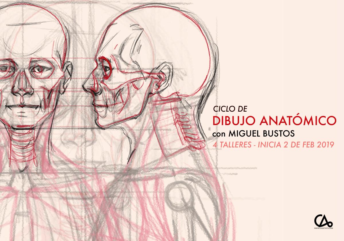CICLO DIBUJO ANATÓMICO // 5 de feb