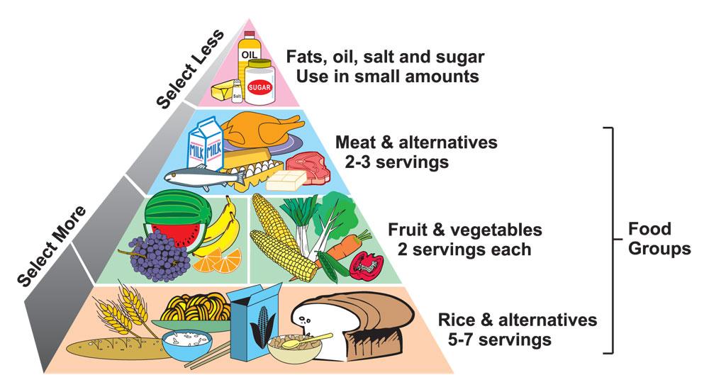 Healthy Diet Plan Weight Loss Breakfast