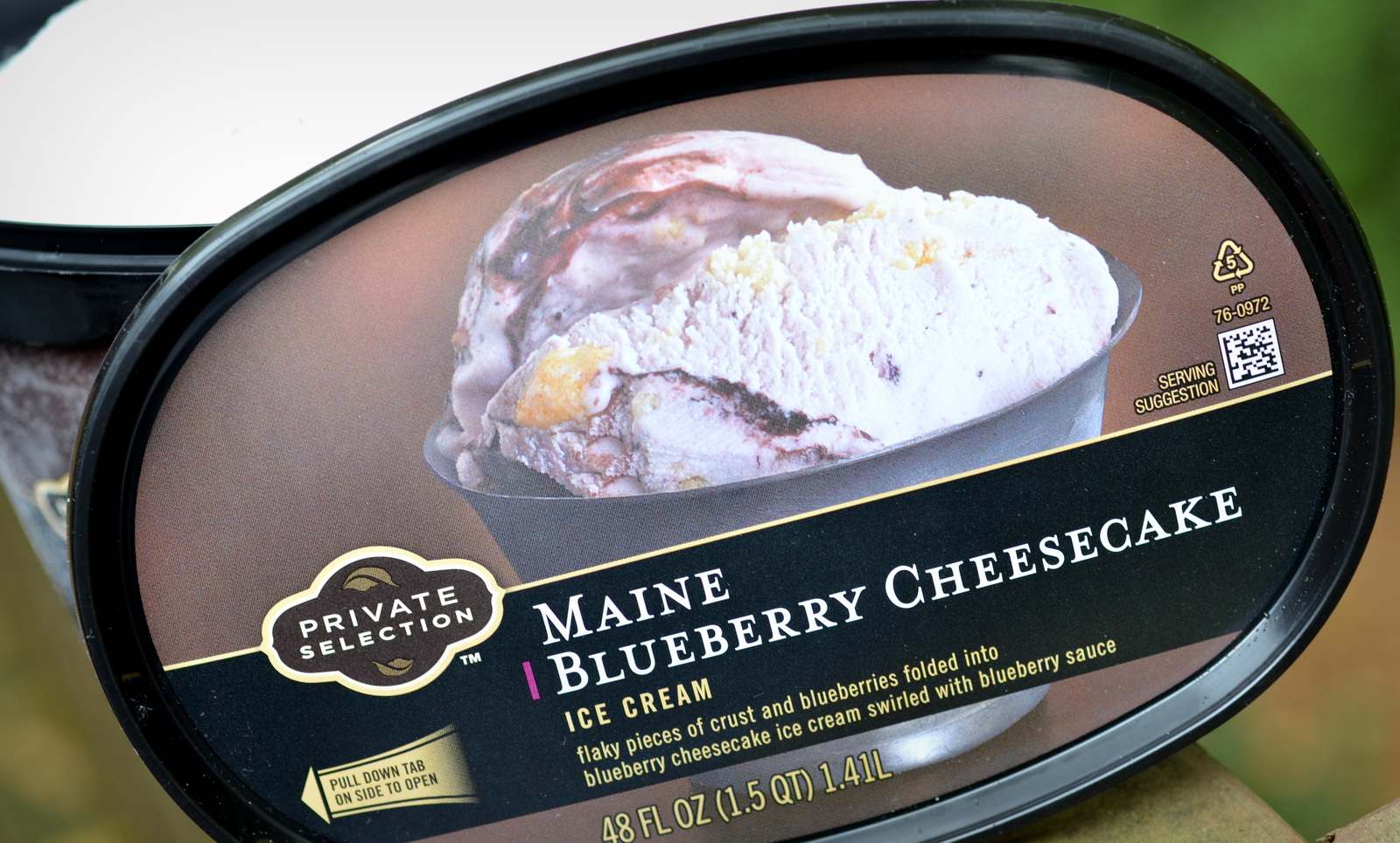 jerry s blueberry cheesecake had been my first cheesecake ice cream ...